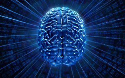 La práctica de meditación produce alteraciones únicas en la corteza cerebral